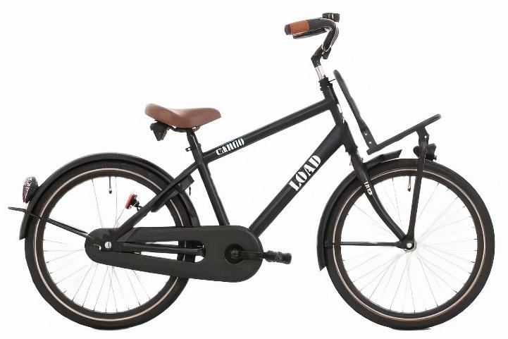 Bike Fun Load 20 Inch 33 Cm Jongens Terugtraprem Matzwart online kopen